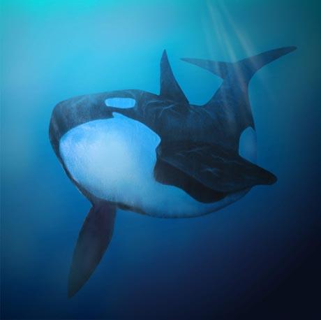 Profeten Jona i valfiskens buk