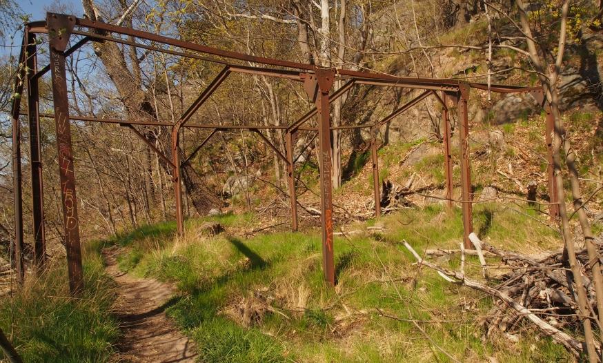 En bortglömd trädgård