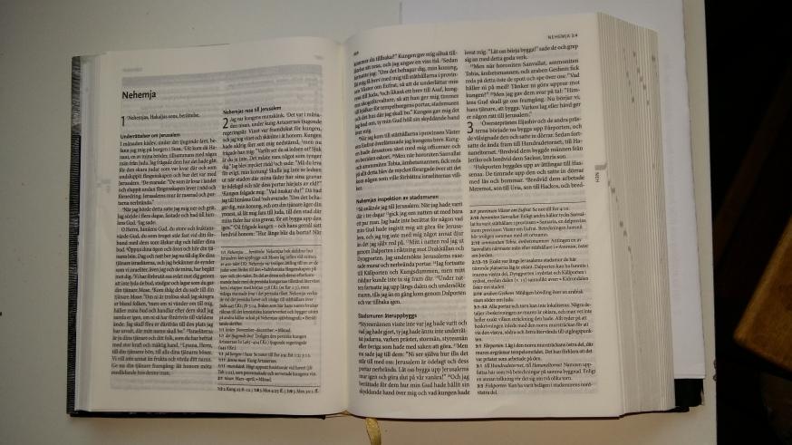 bibel-nehemja